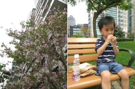 Shangtayou Park-02